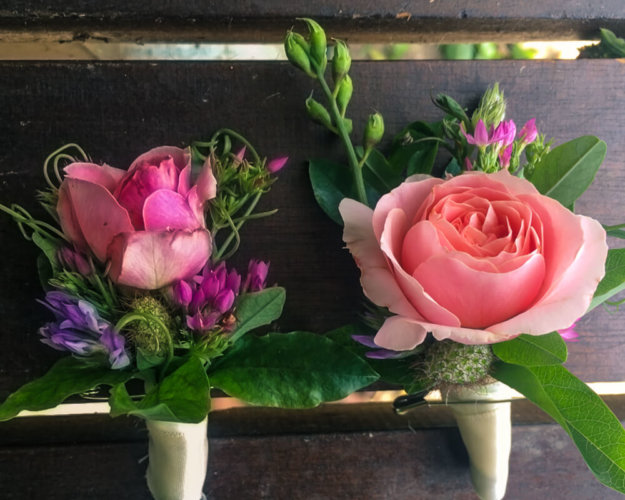Flowers_Wildflowers_France00001