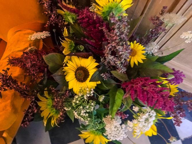 Flowers_Wildflowers_France00007